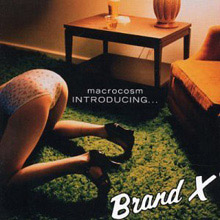 Macrocosm - Introducing... Brand X